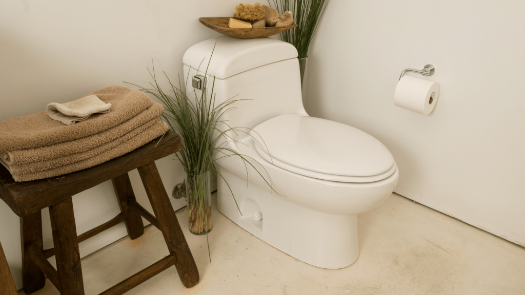 One-Piece Types of Toilets