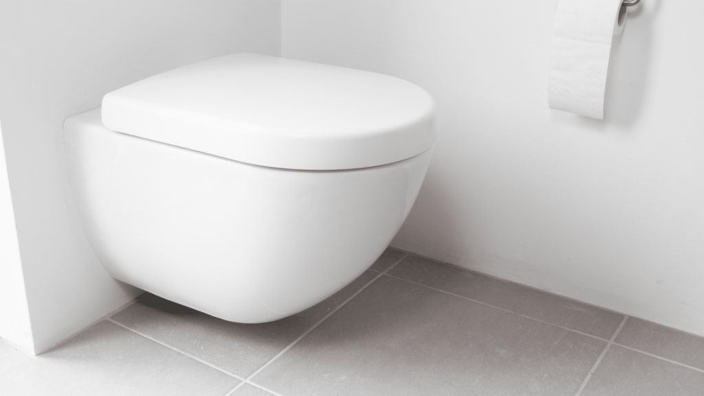Wall-Hung Types of Toilets